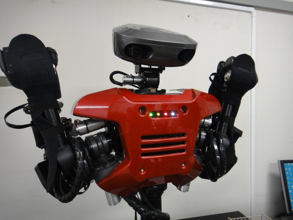 Intelligent Humanoid Robot
